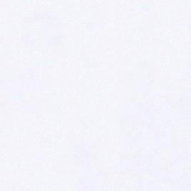 Distinction Smooth - extrema white (00) - Watermerk - 45x64 - 100 GM - 500 vel