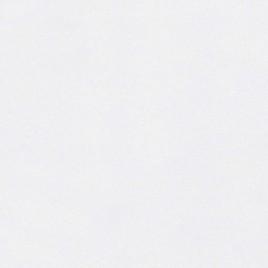 Distinction Smooth - ultima white (01) - Watermerk - 45x64 - 100 GM - 500 vel