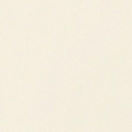 Distinction Smooth - sopra white (02) - Watermerk - 45x64 - 100 GM - 500 vel